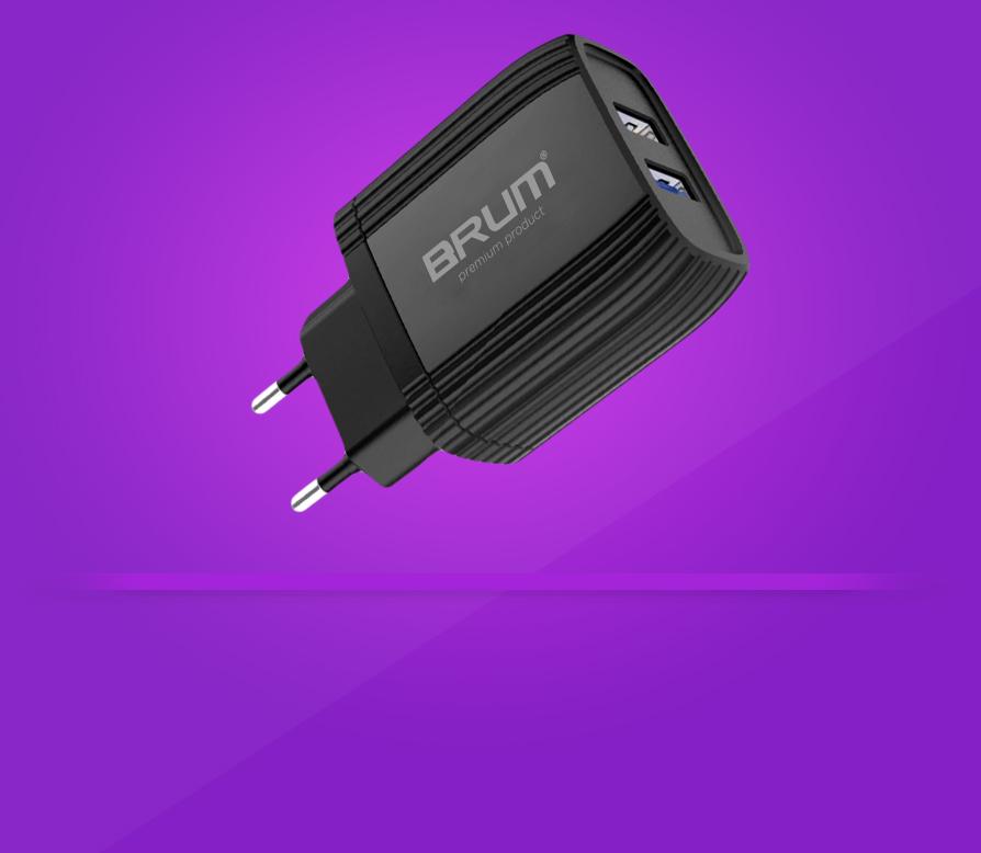 Зарядное сетевое BRUM BM-S006